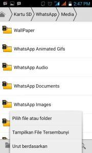 Download Status Foto dan Video Whatsapp
